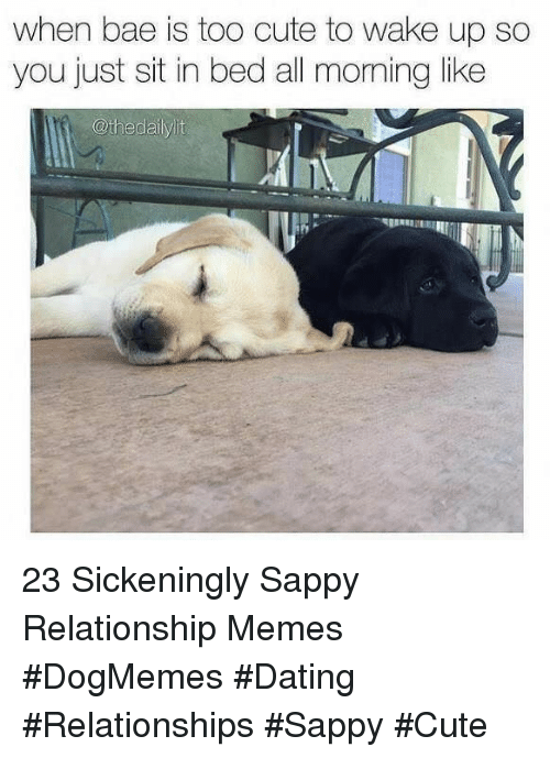 Relationship Memes: when bae is too cute to wake up so  you just sit in bed all moming like  @thedailylit 23 Sickeningly Sappy Relationship Memes #DogMemes #Dating #Relationships #Sappy #Cute