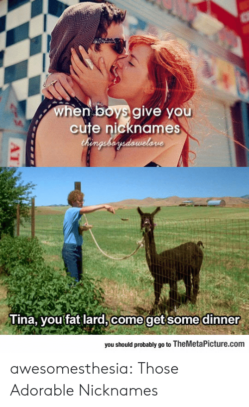 Cute, Tumblr, and Blog: when boys give you  cute nicknames  Chenguberdawelone  Tina, you fat lard, come getsome dinner  you should probably go to TheMetaPicture.com  AT awesomesthesia:  Those Adorable Nicknames