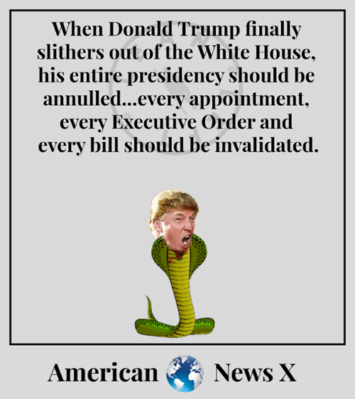 Donald Trump, Memes, and News: When Donald Trump finally  slithers out of the White House,  his entire presidency should be  annulled...every appointment.  every Executive Order and  every bill should be invalidated.  American News X