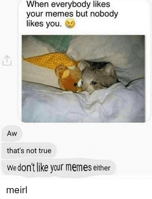 Memes, True, and MeIRL: When everybody likes  your memes but nobody  likes you.  Aw  that's not true  Wedon't like your memes either meirl