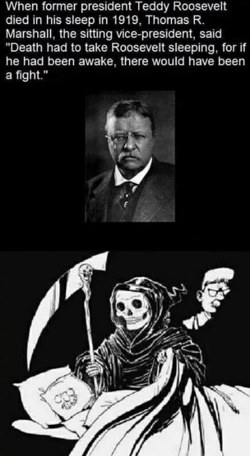 "Sleep In: When former president Teddy Roosevelt  died in his sleep in 1919, Thomas R.  Marshall, the sitting vice-president, said  ""Death had to take Roosevelt sleeping, for if  he had been awake, there would have been  a fight."""