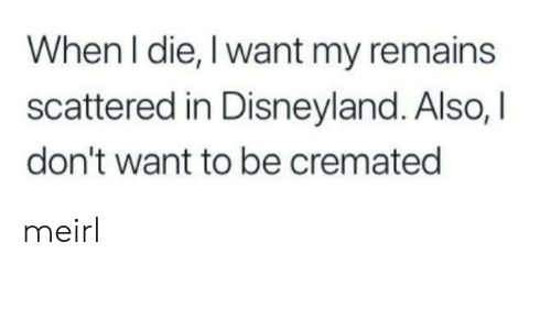 Disneyland, MeIRL, and  Die: When I die, I want my remains  scattered in Disneyland. Also, I  don't want to be cremated meirl