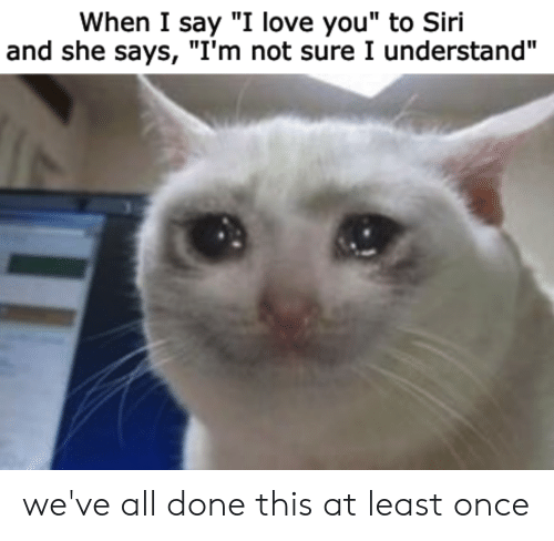 """Love, Siri, and I Love You: When I say """"I love you"""" to Siri  and she says, """"I'm not sure I understand"""" we've all done this at least once"""