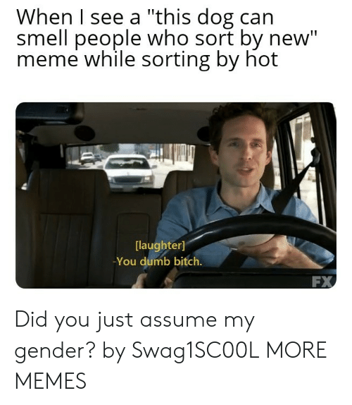 """You Dumb Bitch: When I see a """"this dog can  smell people who sort by new""""  meme while sorting by hot  laughter]  -You dumb bitch.  FX Did you just assume my gender? by Swag1SC00L MORE MEMES"""