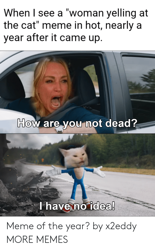 """Meme Of: When I see a """"woman yelling at  the cat"""" meme in hot, nearly a  year after it came up.  How are you not dead?  T have no idea! Meme of the year? by x2eddy MORE MEMES"""