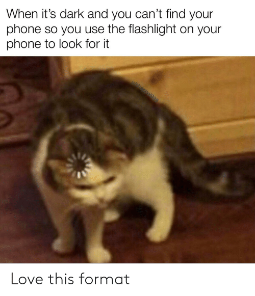 Love, Phone, and Flashlight: When it's dark and you can't find your  phone so you use the flashlight on your  phone to look for it  uebappel99 Love this format