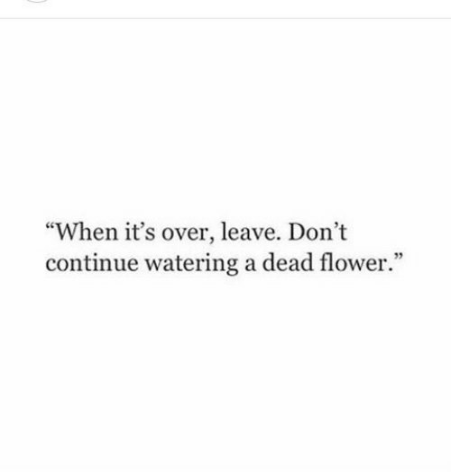 """Flower, Dead, and Continue: """"When it's over, leave. Dont  continue watering a dead flower."""""""