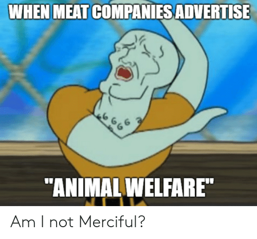 """SpongeBob, Meat, and Companies: WHEN MEAT COMPANIES ADVERTISE  6  """"ANIMALWELFARE"""" Am I not Merciful?"""