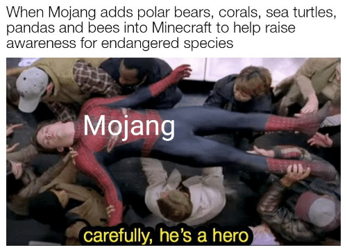 Minecraft, Bears, and Help: When Mojang adds polar bears, corals, sea turtles,  pandas and bees into Minecraft to help raise  awareness for endangered species  Mojang  carefully, he's a hero)
