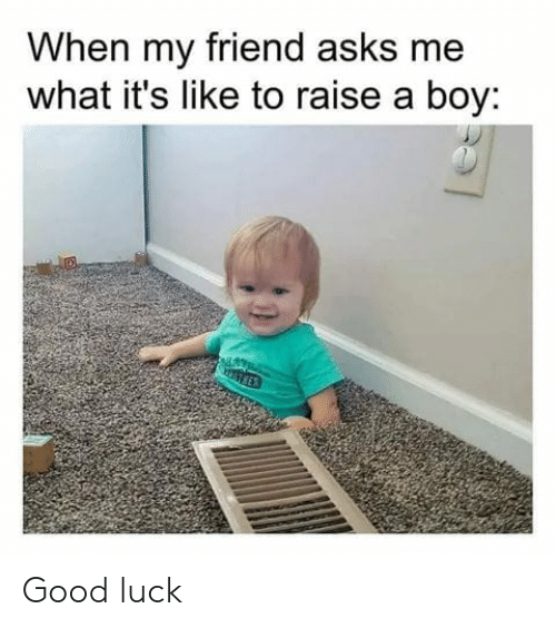 Dank, Good, and Luck: When my friend asks me  what it's like to raise a boy: Good luck
