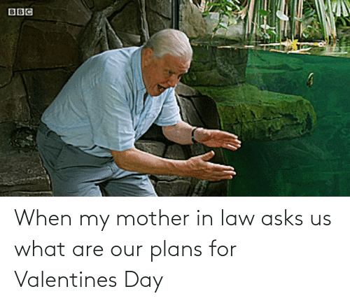 When: When my mother in law asks us what are our plans for Valentines Day