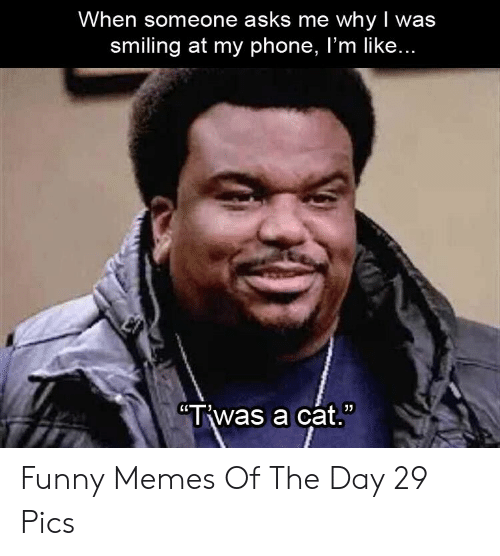 "Funny, Memes, and Phone: When someone asks me whyI was  smiling at my phone, I'm like...  ""Twas a cat. Funny Memes Of The Day 29 Pics"