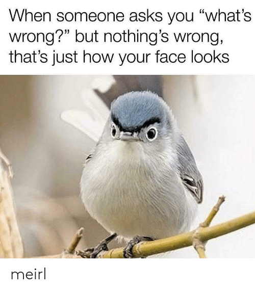 """MeIRL, Asks, and How: When someone asks you """"what's  wrong?"""" but nothing's wrong,  that's just how your face looks meirl"""