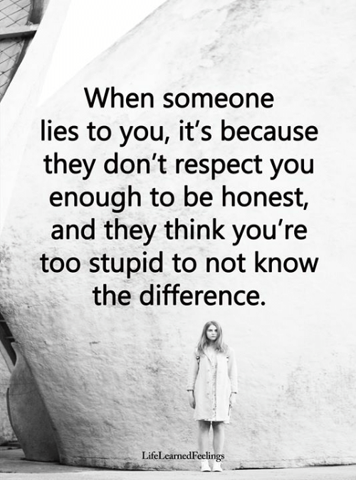 Memes, Respect, and 🤖: When someone  lies to you, it's because  they don't respect you  enough to be honest,  and they think you're  too stupid to not know  the difference.  LifeLearnedFeelings