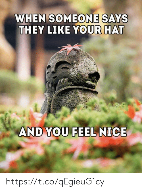 Memes, Nice, and 🤖: WHEN SOMEONE SAYS  THEY LIKE YOUR HAT  AND YOU FEEL NICE https://t.co/qEgieuG1cy