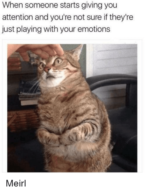 MeIRL, You, and Not Sure If: When someone starts giving you  attention and you're not sure if they're  just playing with your emotions Meirl