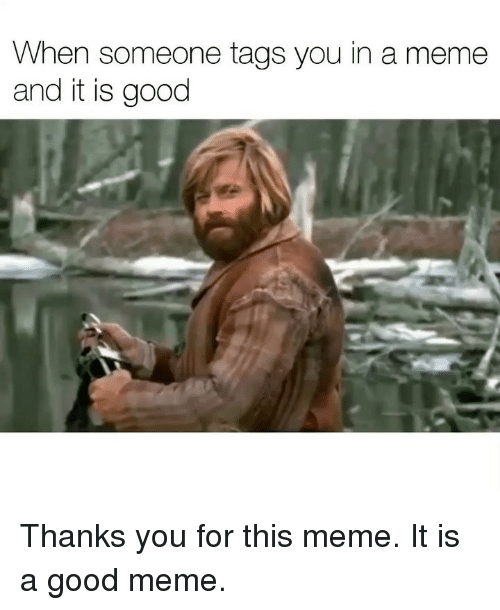 Meme It: When someone tags you in a meme  and it is good Thanks you for this meme. It is a good meme.