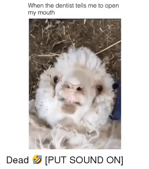Sound, Open, and Dentist: When the dentist tells me to open  my mouth Dead 🤣 [PUT SOUND ON]