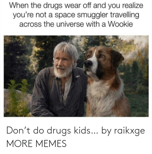 Drugs: When the drugs wear off and you realize  you're not a space smuggler travelling  across the universe with a Wookie Don't do drugs kids… by raikxge MORE MEMES