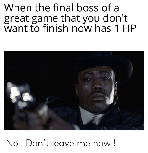 The Final Boss: When the final boss of a  great game that you don't  want to finish now has 1 HP No ! Don't leave me now !