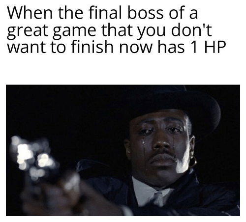 The Final Boss: When the final boss of a  great game that you don't  want to finish now has 1 HP