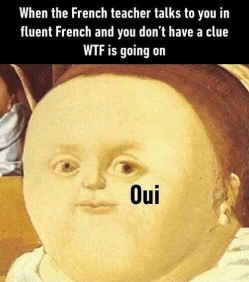 Teacher, Wtf, and French: When the French teacher talks to you in  fluent French and you don't have a clue  WTF is going on  Oui