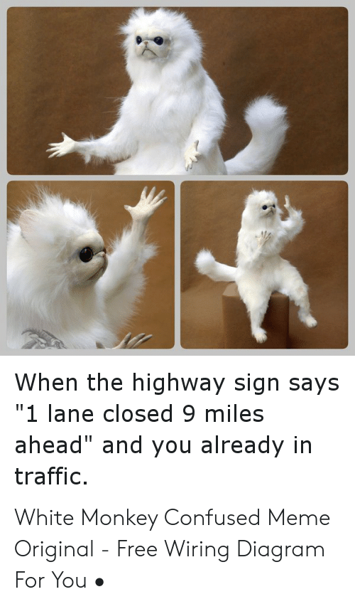 confused, meme, and traffic: when the highway sign says