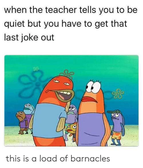 This Is A Load Of Barnacles: when the teacher tells you to be  quiet but you have to get that  last joke out this is a load of barnacles