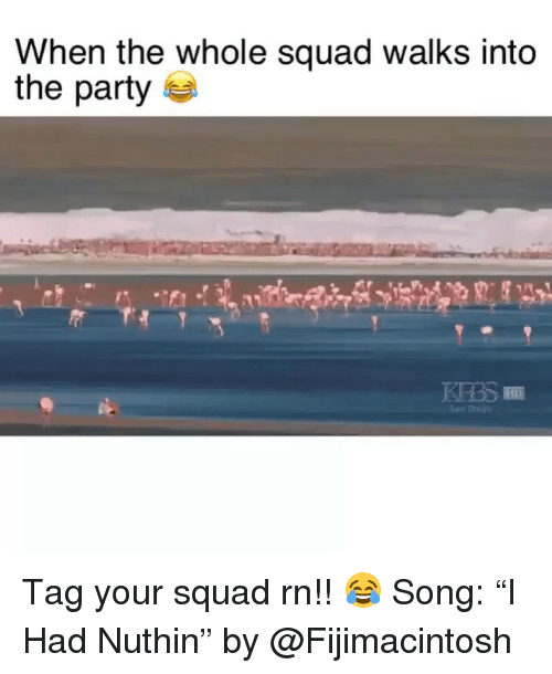 "Funny, Party, and Squad: When the whole squad walks into  the party Tag your squad rn!! 😂 Song: ""I Had Nuthin"" by @Fijimacintosh"