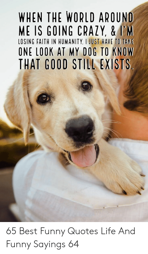 Best Funny: WHEN THE WORLD AROUND  ME IS GOING CRAZY, &I'M  LOSING FAITH IN HUMANITY, I JUST HAVE TO TAKS  ONE LOOK AT MY DOG TO KNOW  THAT GOOD STILL EXISTS 65 Best Funny Quotes Life And Funny Sayings 64