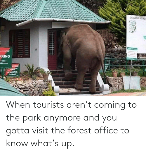 Office: When tourists aren't coming to the park anymore and you gotta visit the forest office to know what's up.