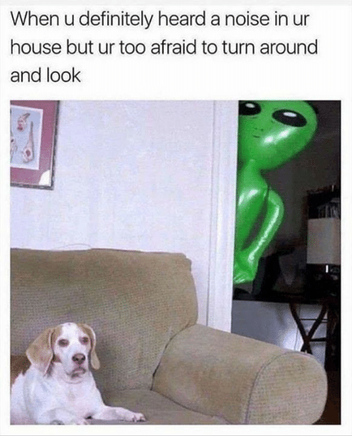 Definitely, Memes, and House: When u definitely heard a noise in ur  house but ur too afraid to turn around  and look
