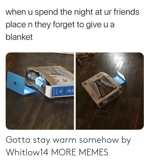 when u: when u spend the night at ur friends  place n they forget to give u a  blanket  EDT  LEDTV Gotta stay warm somehow by Whitlow14 MORE MEMES