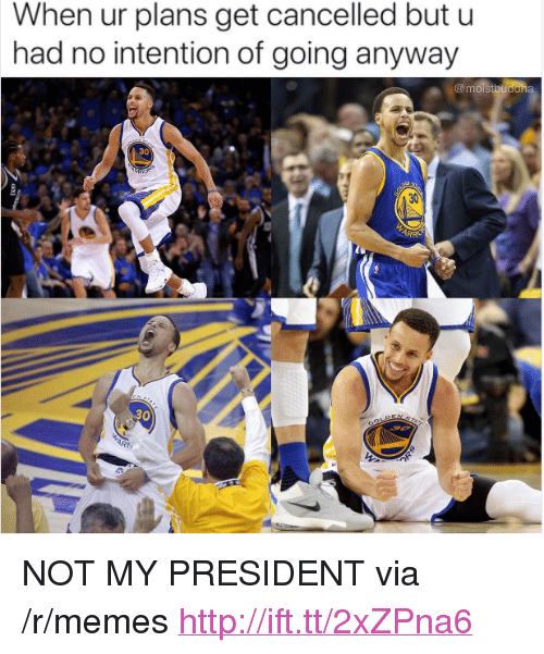 """Not My President: When ur plans get cancelled but u  had no intention of going anyway  30  30 <p>NOT MY PRESIDENT via /r/memes <a href=""""http://ift.tt/2xZPna6"""">http://ift.tt/2xZPna6</a></p>"""