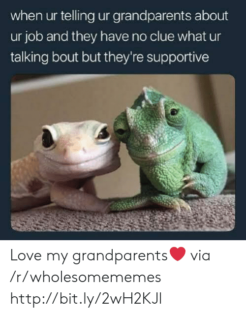 No Clue: when ur telling ur grandparents about  ur job and they have no clue what ur  talking bout but they're supportive Love my grandparents❤ via /r/wholesomememes http://bit.ly/2wH2KJl