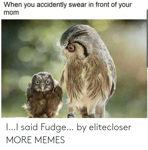 your mom: When you accidently swear in front of your  mom I…I said Fudge… by elitecloser MORE MEMES