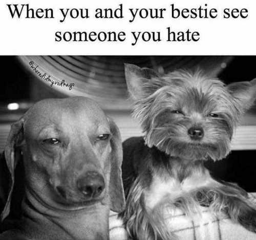 Relationships, You, and Hate: When you and your bestie see  someone you hate  wherehAyedago