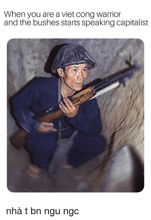 viet cong: When you are a viet cong warrior  and the bushes starts speaking capitalist nhà tư bản ngu ngốc