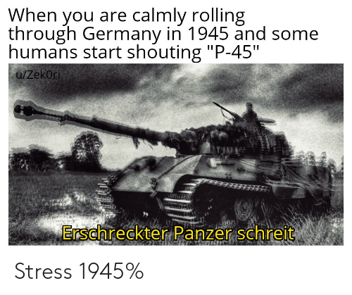 "Germany, History, and Stress: When you are calmly rolling  through Germany in 1945 and some  humans start shouting ""P-45""  u/Zekori  Erschreckter Panzer schreit Stress 1945%"