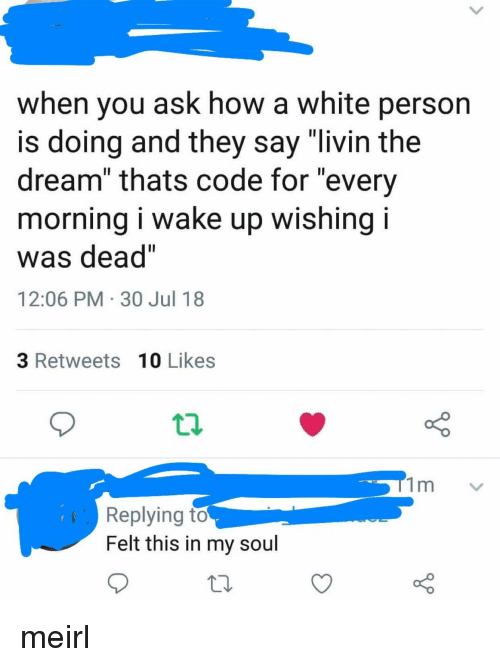 "White, MeIRL, and How: when you ask how a white person  s doing and they say livin the  dream"" thats code for ""every  morning i wake up wishing i  was dead""  12:06 PM 30 Jul 18  3 Retweets 10 Likes  Replying to  Felt this in my soul meirl"