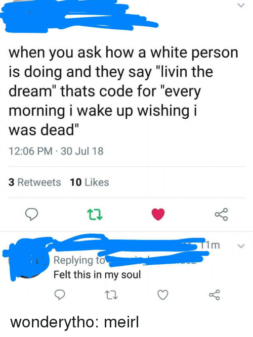 "Livin The Dream: when you ask how a white person  s doing and they say livin the  dream"" thats code for ""every  morning i wake up wishing i  was dead""  12:06 PM 30 Jul 18  3 Retweets 10 Likes  Replying to  Felt this in my soul wonderytho:  meirl"