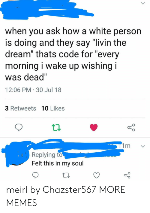 "Livin The Dream: when you ask how a white person  s doing and they say livin the  dream"" thats code for ""every  morning i wake up wishing i  was dead""  12:06 PM 30 Jul 18  3 Retweets 10 Likes  Replying to  Felt this in my soul meirl by Chazster567 MORE MEMES"