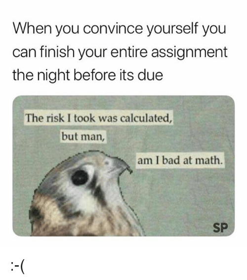 Risk I Took Was Calculated But Man Am I Bad At Math: When you convince yourself you  can finish your entire assignment  the night before its due  The risk I took was calculated  but man,  am I bad at math  SP :-(