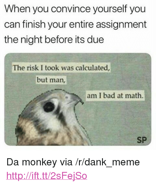 """Risk I Took Was Calculated But Man Am I Bad At Math: When you convince yourself you  can finish your entire assignment  the night before its due  The risk I took was calculated  but man,  am I bad at math.  SP <p>Da monkey via /r/dank_meme <a href=""""http://ift.tt/2sFejSo"""">http://ift.tt/2sFejSo</a></p>"""