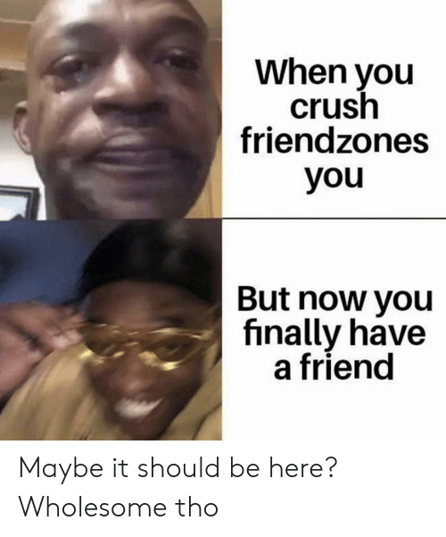 Crush, Wholesome, and Friend: When you  crush  friendzones  you  But now you  finally have  a friend Maybe it should be here? Wholesome tho