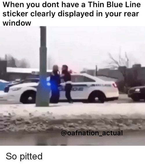 Memes, Blue, and Rear Window: When you dont have a Thin Blue Line  sticker clearly displayed in your rear  window  @oafnation_actual So pitted