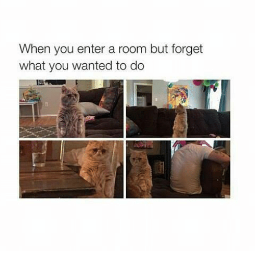 Memes, 🤖, and Wanted: When you enter a room but forget  what you wanted to do