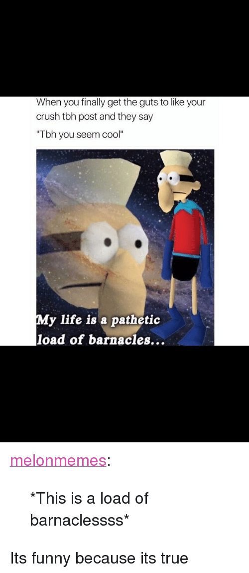 "Its Funny Because Its True: When you finally get the guts to like your  crush tbh post and they say  Tbh you seem cool""  My life is a pathetic  load of barnacles... <p><a href=""https://melonmemes.tumblr.com/post/158456208514/this-is-a-load-of-barnaclessss"" class=""tumblr_blog"">melonmemes</a>:</p><blockquote><p>*This is a load of barnaclessss*</p></blockquote> <p>Its funny because its true</p>"