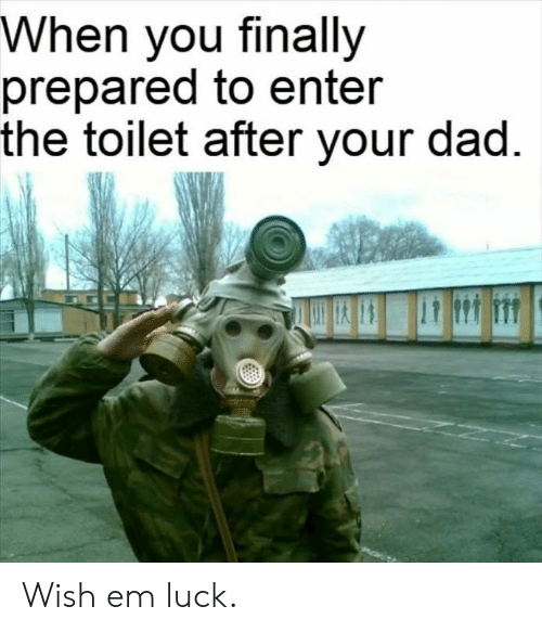 Dad, Dank, and Luck: When you finally  prepared to enter  the toilet after your dad Wish em luck.
