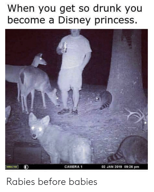 Disney, Drunk, and Camera: When you get so drunk you  become a Disney princess  CAMERA 1  02 JAN 2019 09:26 pm Rabies before babies
